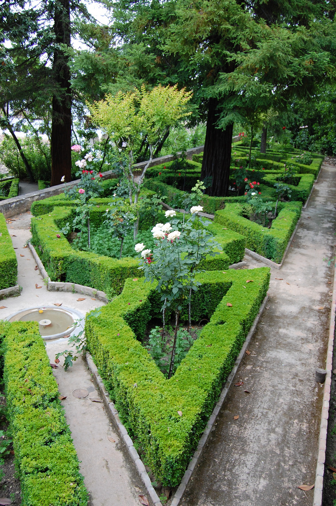Jardines altos for Arboles altos para jardin